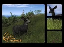 The Hunter 2014 Gameplay Mule Deer