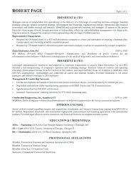 Resume Professional Profile Examples Bright Idea 5 Example Of