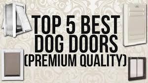Petsafe Freedom Patio Panel Pet Door 96 by Top 5 Best Dog Doors Premium Quality Youtube
