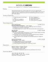 Executive Resume Templates Save 1 Page Template New Elegant Cv
