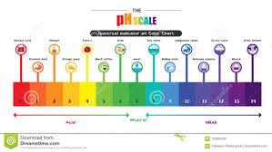 100 Ph Of 1 Test Scale Diagram Wiring Diagram