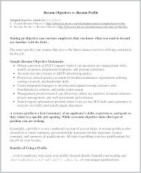 Profile In A Resume Personal Examples