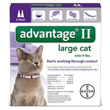 flea treatment for cats advantage ii flea large cat for cats 9