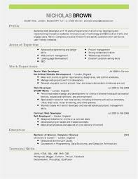 No Experience Resume Sample New Lead Carpenter Professional Template Nurse Of