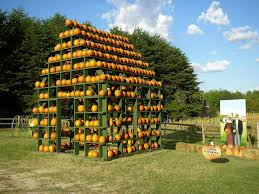 Maize Valley Pumpkin Patch by Kersey Valley Maize Adventure Archdale Nc Visiting Kersey