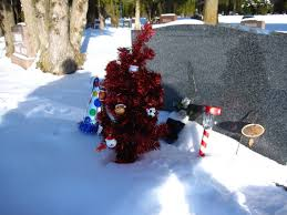For His First Christmas We Brought A Tree And Stocking With Messages Inside Also New Years Birthday Hat Really Its Not Him