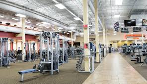 Powerhouse Gym Shelby Store Coupon Code Aquarium Clementon Nj Start Fitness Discount 2018 Print Discount National Geographic Hostile Planet White Unisex Tshirt Online Coupons Sticky Jewelry Free Shipping How It Works Blue365 Deals Fitness Smith Machine Dark Iron Free Massages Nationwide From Hydromassage And Beachbody Coupons Promo Codes 2019 Groupon