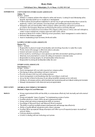 Download Store Sales Associate Resume Sample As Image File