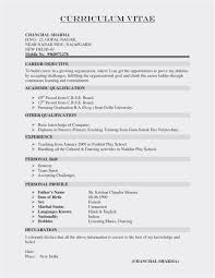 Resume Writers Nyc Lovely Library Resume Template Fresh ...