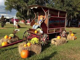 Tallahassee Pumpkin Patch by 10 Best Pumpkin Patches In Florida