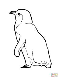 Christmas Penguin Coloring Pages Printable Club Sheets Incredible