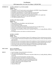 Download Global Leader Resume Sample As Image File