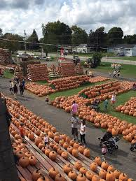 Wheatfield Pumpkin Patch by Fall Fun In Western Ny Where Locals Go For Apples Pumpkins