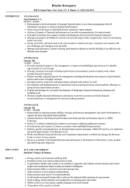 VP, Finance Resume Samples   Velvet Jobs 8 Amazing Finance Resume Examples Livecareer Resume For Skills Financial Analyst Sample Rumes Job Senior Executive Samples Project Manager Download High Quality Professional Template Financial Advisor Description Finance Sample Velvet Jobs Arstic Templates Visualcv Services Example Auditor To Objective Analyst Sazakmouldingsco