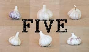 culinary garlic