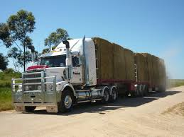 HML For Hay Filerefueling Hay Truckjpg Wikimedia Commons Highway 99 Reopens In South Sacramento After Hay Truck Fire Fox40 Semi Truck Load Of Kims County Line Did We Make A Small Stock Image Image Biological Agriculture 14280973 Boys Life Magazine Old With Photo Trucks Rusty 697938 Straw Trailers Mccauley Richs Cnection Peterbilt 379 At Truckin For Kids 2013 Youtube Hay Train West Coast Style V1 Truck Farming Simulator 2019 John Deere Frontier Implements Landscape Mowing Dowling Bermuda Celebrity Equine Llc
