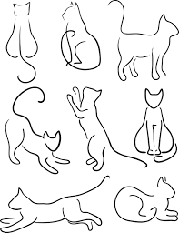 Cat Paw Print Pumpkin Stencil by Zoe Padmore Instagram Photos Zoepadmore Instagram Profil