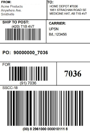 Home Depot EDI pliance & Vendor Requirements