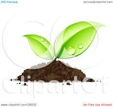 Clipart Illustration of a Sprouting Seedling Plant Emerging From A Pile Dirt With Dew Its Leaves by beboy
