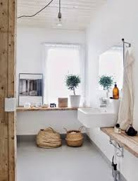 Plants For Bathroom Counter by Plants Help Clean The Air And Eliminate Bacteria Which Makes Them