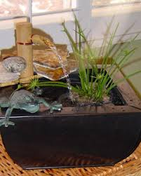 Pot Plants For The Bathroom by Making A Pond In A Pot Hgtv