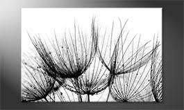 leinwandbilder mit schwarz weiß motiven sofortversand