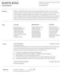 Sample Resume For Finance Manager It Senior
