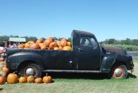 Pumpkin Patch Marble Falls by Prices Sweet Berry Farm Marble Falls Texas