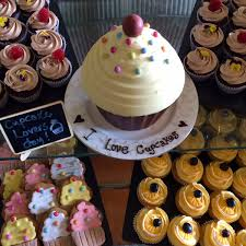 Today Its All About Cupcakes In Our Drawing Room Chocolate Fudge Orange And Blueberry Ginger Cupcake Biscuits