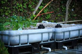 Aquaponic BackYard System How to build Part 1 YouTube