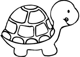 Turtle Preschool Coloring Pages Zoo Animals