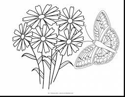 Incredible Butterfly And Flower Coloring Pages With Free