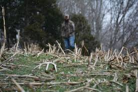 Does Deer Shed Their Antlers by Top 6 Best Places To Find Shed Antlers Muddy Outdoors