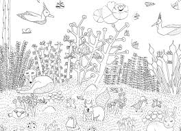 Coloriage Foret For T 35 Nature Coloriages Imp 7496