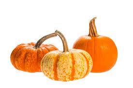 Varieties Of Pie Pumpkins by Pumpkins My Blog