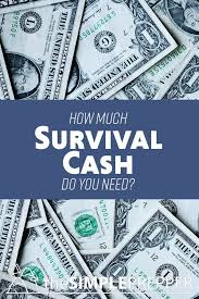 How Much Cash Do You Need At Home For A Survival Situation What Happens If