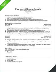 Information Technology Resume Examples 2016 Together With