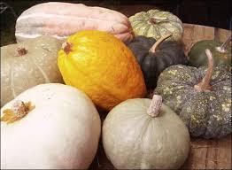 Kohala Pumpkin Patch 2014 by Squash U0026 Awe