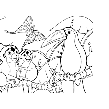 Rainforest To Print Animals Coloring Pages