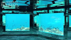 100 Anantara Kihavah Villas Maldives Sea Underwater Restaurant Day Simply Maldives Video