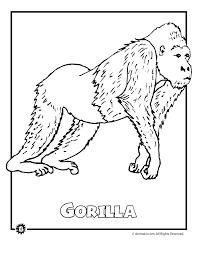 Endangered Gorilla Animal Coloring Page