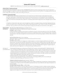 Vice President Resume Samples Sample Executive Examples