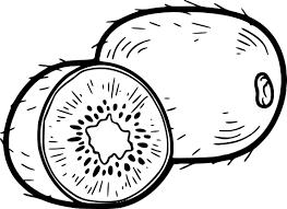 Coloriage Kiwi à Imprimer Sur COLORIAGES Info