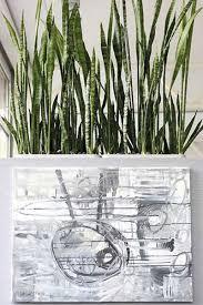 september 2015 feng shui mit pflanzen für esszimmer und co