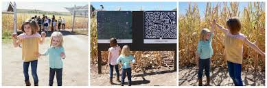 Chatfield Pumpkin Patch Hours by Get Lost In The 8 Acre Corn Maze At Chatfield Farms Macaroni Kid