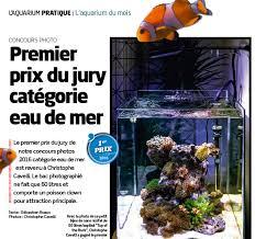 aquarium nano eau de mer concours photo eau de mer d aquarium à la maison n 120 récifal news