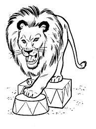 Lion Coloring Pages Print