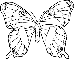 Free Coloring Pages Butterflies And Flowers
