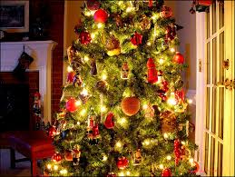 Sugar Or Aspirin For Christmas Tree by Real Family Christmas Trees And Tips To Make Them Last