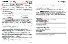 Great Professional Resume Templates Best Format Doc